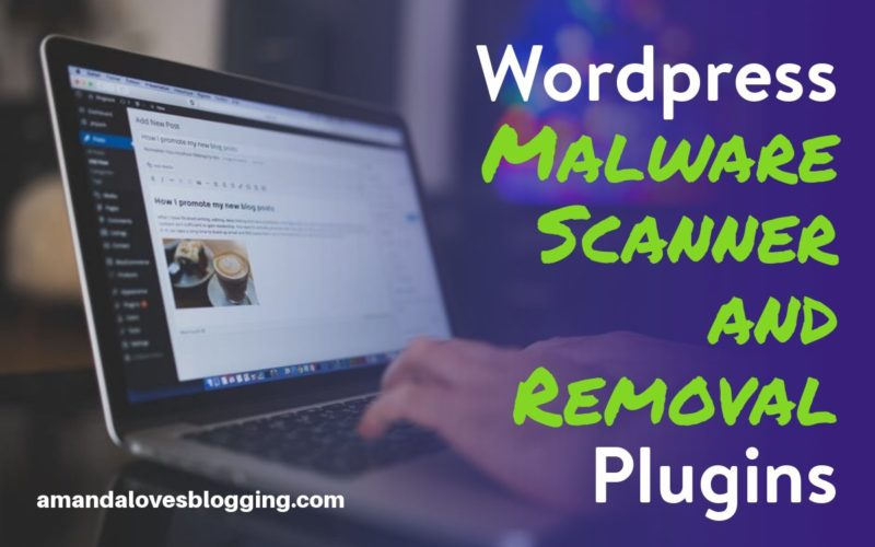 6 Best WordPress Malware Scanner and Removal Plugins (Free + Paid) Compared